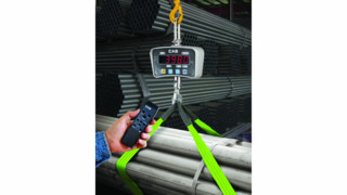 Alliance/CAS IE Series crane scales