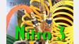 New Multiplexing Nitro 3