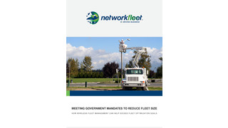 MEETING GOVERNMENT MANDATES TO REDUCE FLEET SIZE