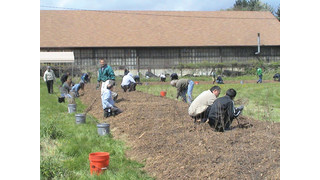 Phase III of Yokohama Tire Corporation's 'Forever Forest' program branches out at Salem facility