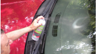 Plus Glass Cleaner for Vehicles