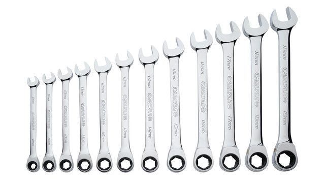 12-pc Metric Ratcheting Wrench Set