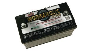 31-ECL battery